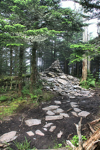 This pile of rocks is the true summit of Mount Le Conte. Word of mouth on the trail is that everyone puts a rock on it to try and make Mount Le Conte the tallest mountain in GSMNP,  instead of the third.