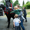 A family driving by saw the horses being suited up and prepped.  Michelle welcomed them to pet, feed a corrot and sit atop the gentle giants.  Johnny loves attention, children and cameras.