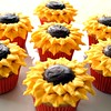 Sunflower cupcakes :)