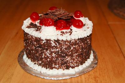 2010 03 07-Ryans Birthday Cakes 007