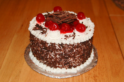 2010 03 07-Ryans Birthday Cakes 005