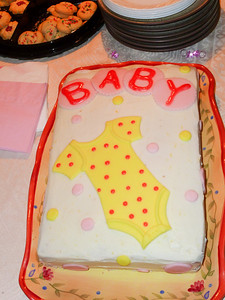 2010 11 28-Baby Shower 002