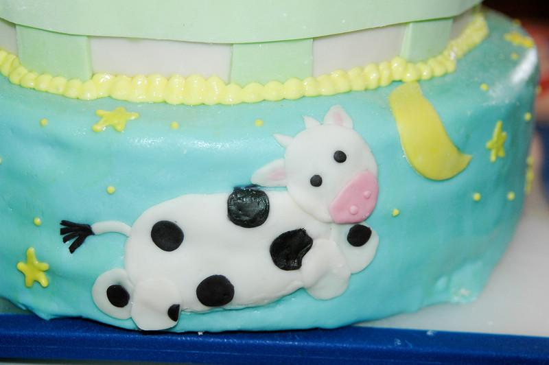 2011 04 10-Baby Shower Cake 006
