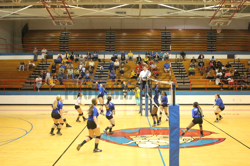 2014 Caldwell Volleyball381