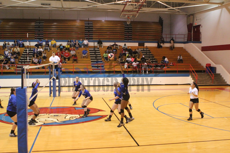 2014 Caldwell Volleyball454