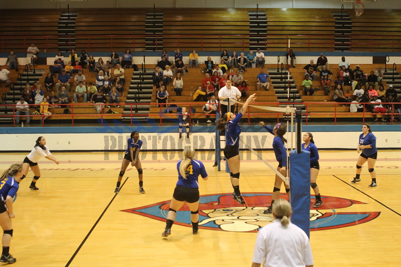 2014 Caldwell Volleyball416