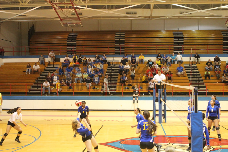 2014 Caldwell Volleyball403