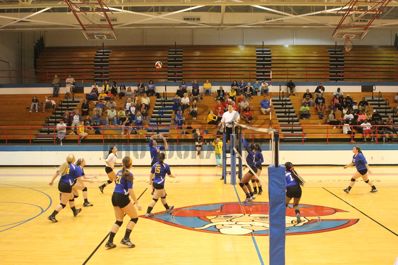 2014 Caldwell Volleyball380