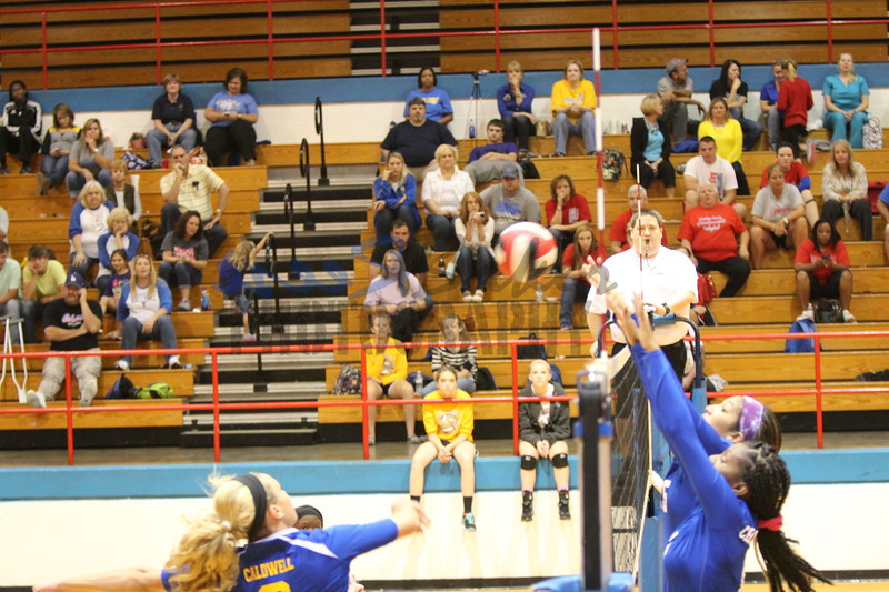 2014 Caldwell Volleyball148