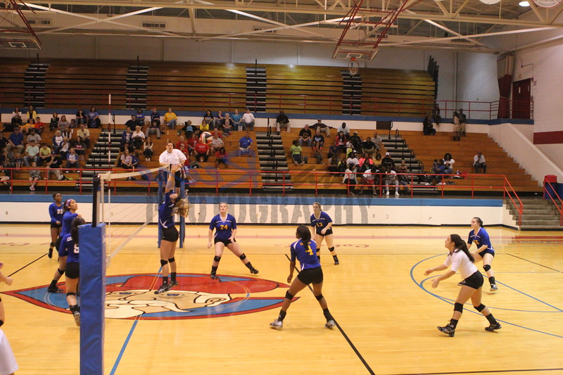 2014 Caldwell Volleyball455