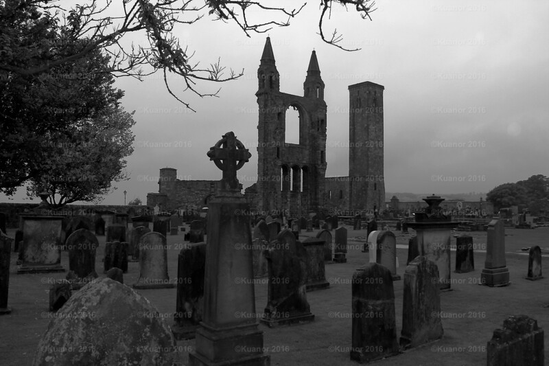 The Abbey Graveyard, St. Andrews