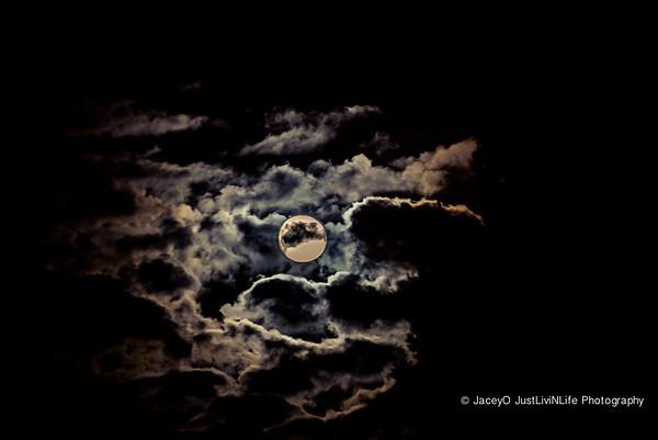 Velvet Full Moon