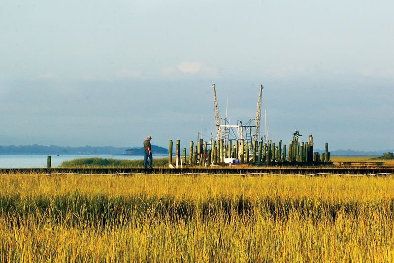 "morning sun on autumn's golden marsh grasses w shrimp boat in the background, ""a hard life"" in all that beauty."