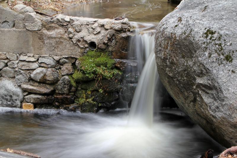 Marion Creek in spring