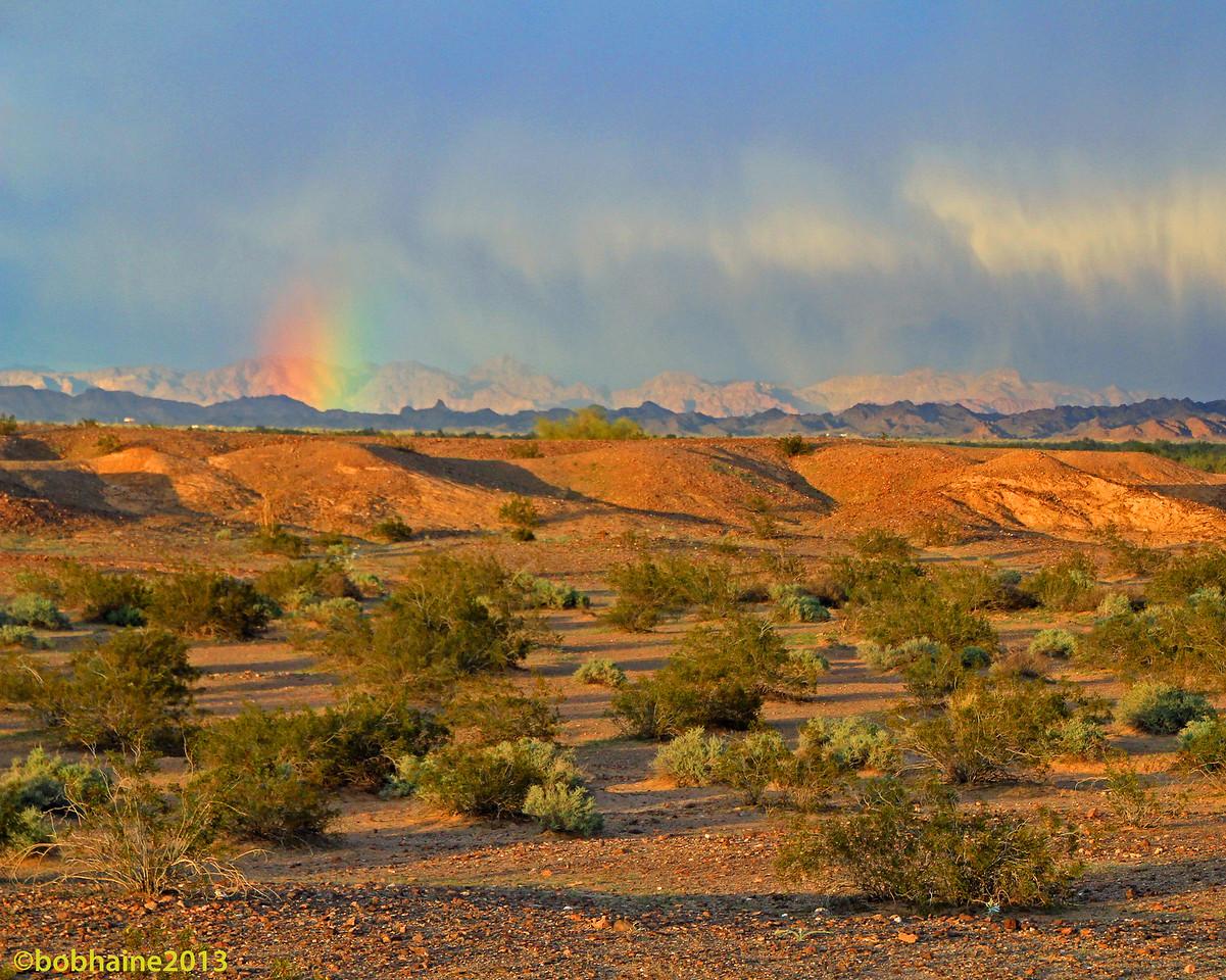 Yuma Rainbow