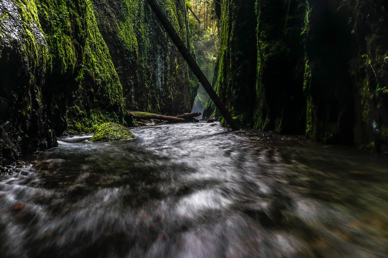 The Hallways of Always, Oneonta Gorge