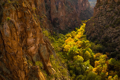 Pinal Creek, Salt River Canyon Wilderness