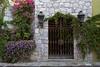 Doors of San Miguel_1890a