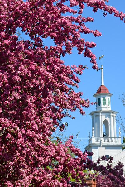 Spring, South Church