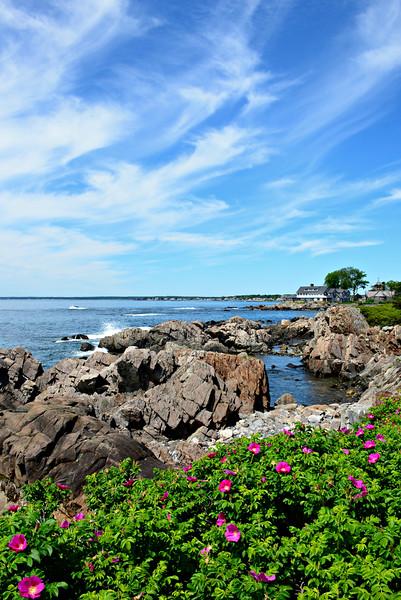 Summer, Ocean Avenue