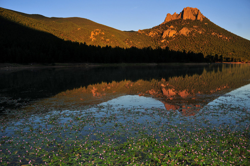 Smartweed on Wellington Reservoir and the Castle, Lost Creek Wilderness