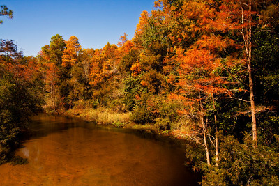 Turkey Creek in the Fall- Niceville, Florida