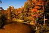 Turkey Creek in the Fall- Niceville, Florida