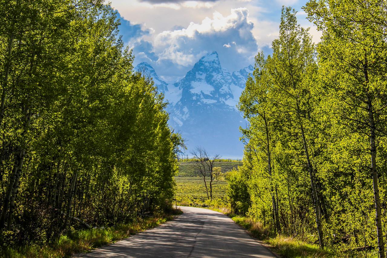 Teton Spring!
