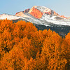 Photo by Walt Hester<br /> Aspens take on the same orange hue as the Diamond on Longs Peak before an October sunrise. The autumnal colors of aspen can change from year to year depending on the weather of the previous winter and spring.