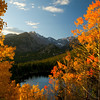 Photo by Walt Hester<br /> Aspens from the iconic view of Bear Lake and Longs Peak in Rocky Mountain National Park. Thre view is so closely tied to fall in the area that two competing newspapers featured it on their front pages in the same week.