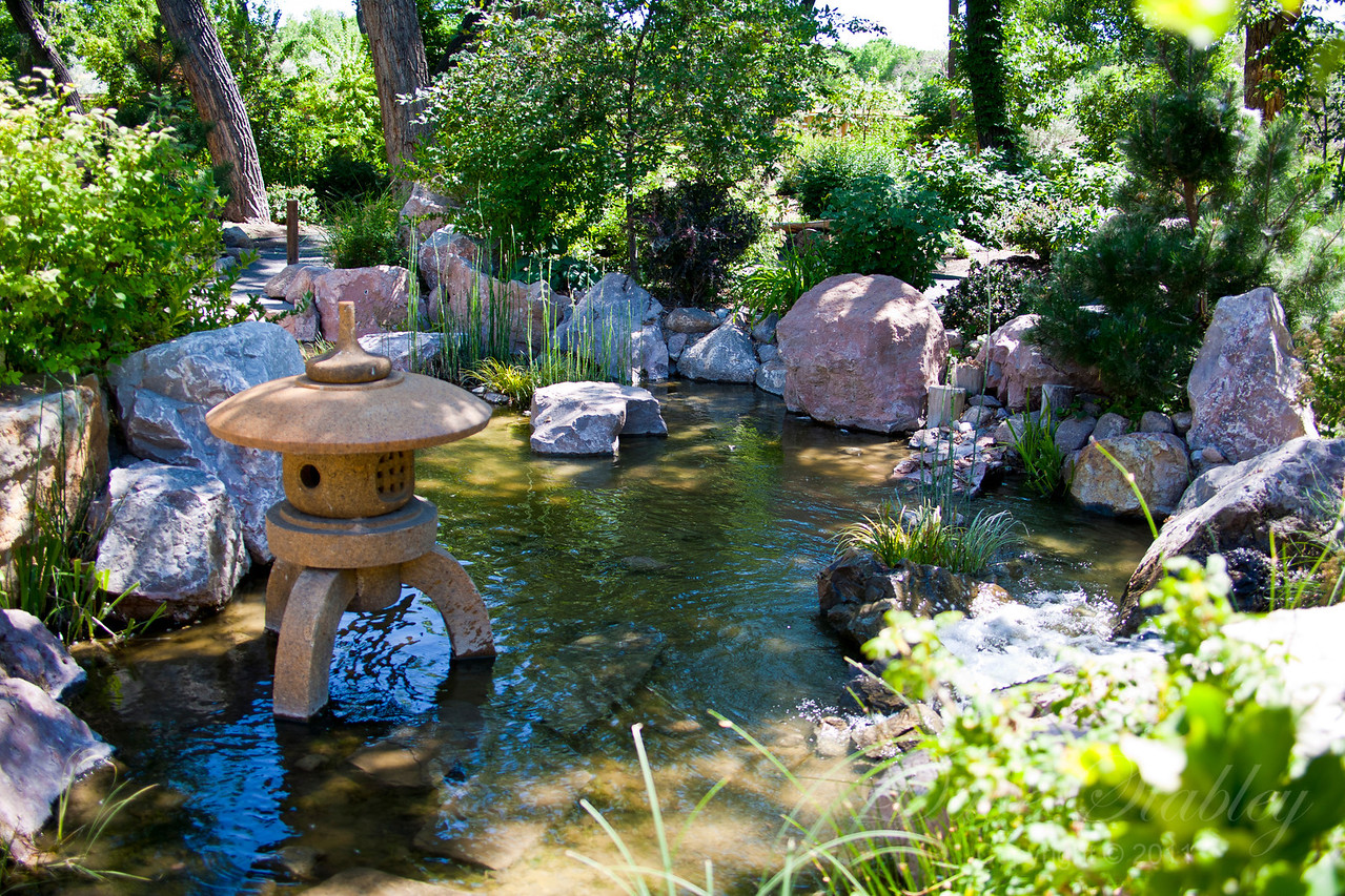 Japanese Gardens at the ABQ Bio Park