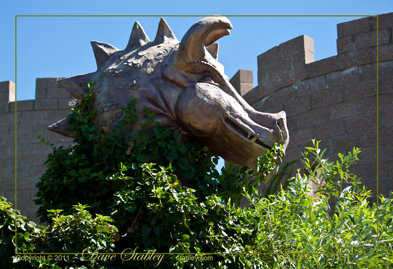 Let there be Dragons - fantasy park at the ABQ Bio Park