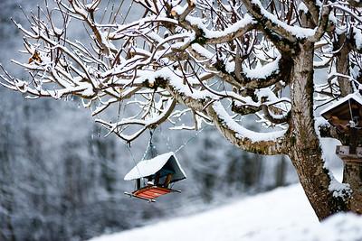 """Prima neve """"seria"""" (o quasi)"""