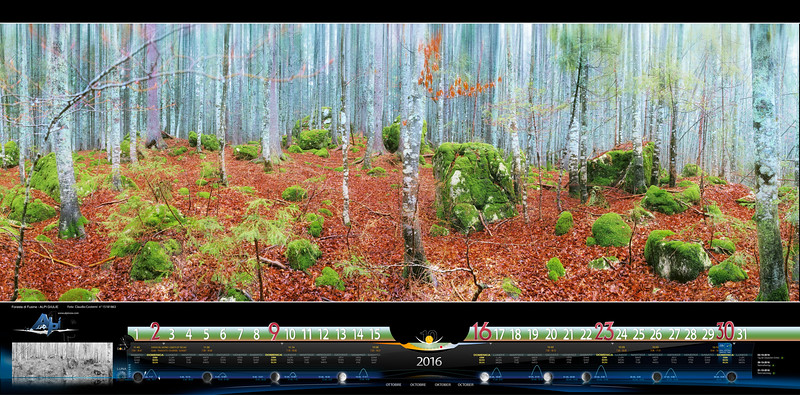 OTTOBRE - Foresta di Fusine