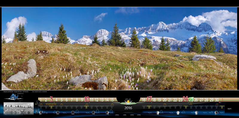 APRILE - Canin visto dai piani del Montasio con i crochi in fiore