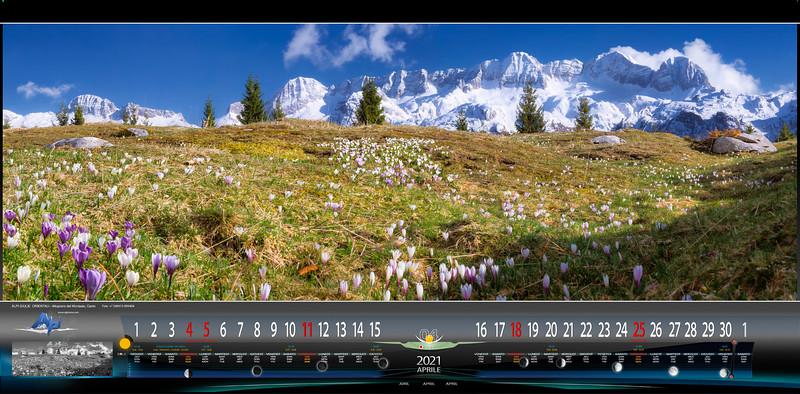 Altopiano del Montasio fiorito, vista Canin