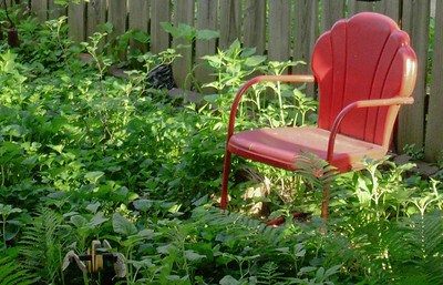 The Red Chair in the Garden