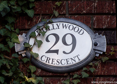 Hollywood Cres, Toronto