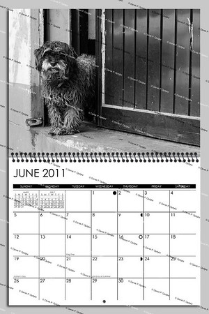 07 June