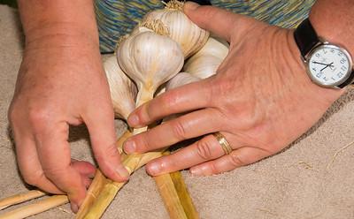 Garlic Origami