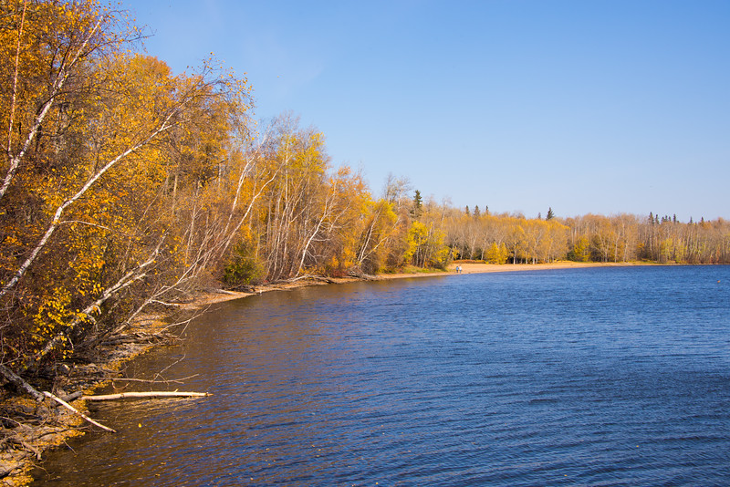 Alberta Autumn Asymptotes