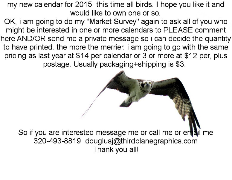 3_March_IMG_0082_Osprey_front_sales memo