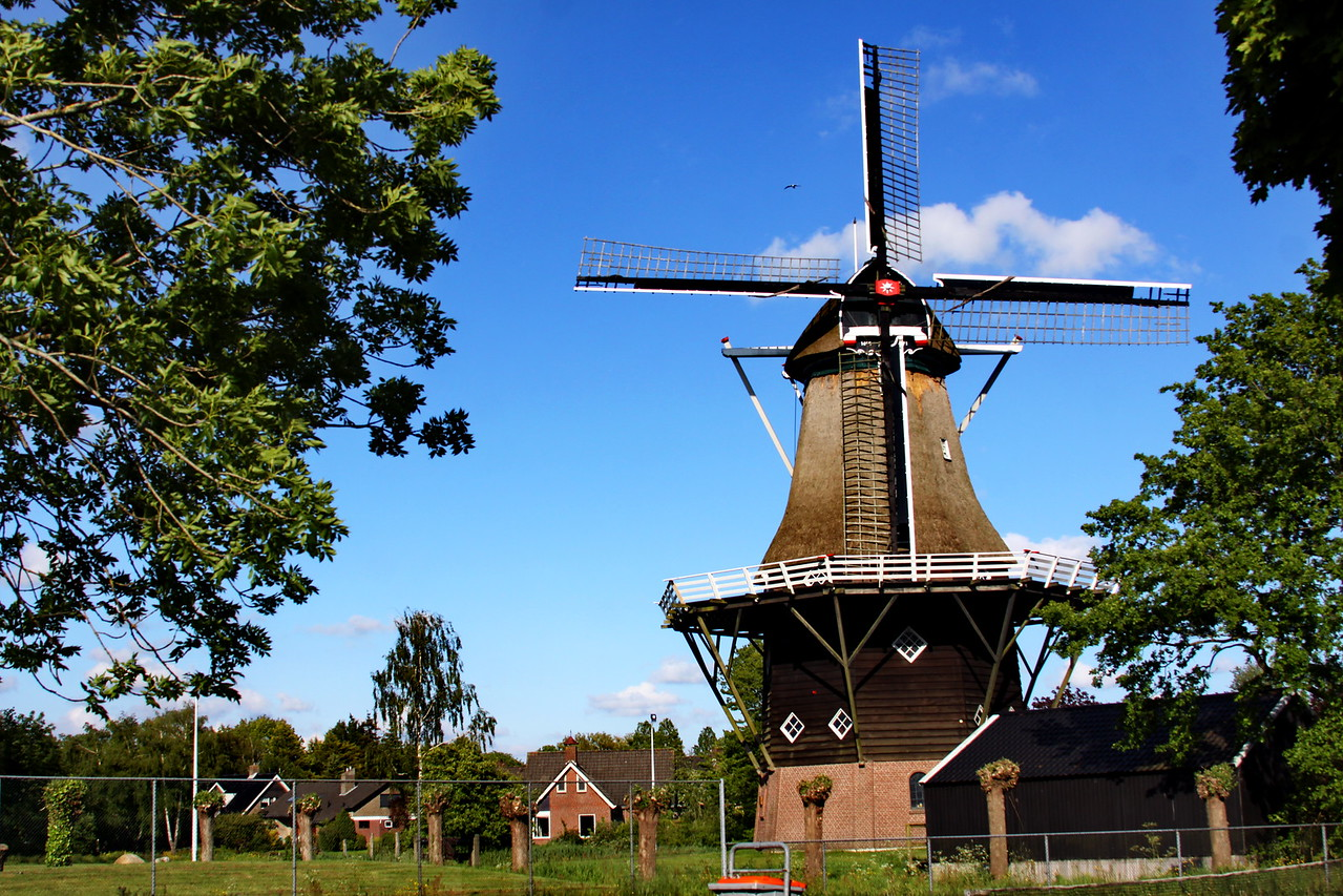 14_back_IMG_8397_windmill_Joure