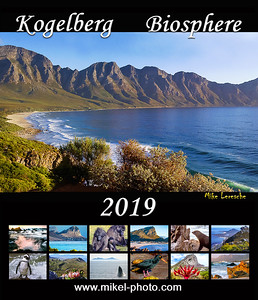 Kogel 2019 Cover