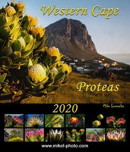 Proteas 2020 Cover4C