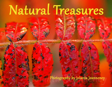 natural-treasures-2012