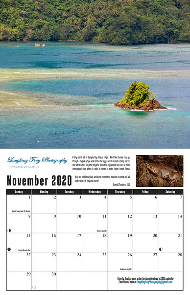 11 November