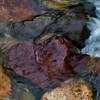 A stream rushes through