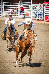 Calgary_Stampede_2014-3895