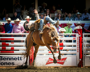 Calgary_Stampede_2014-4802